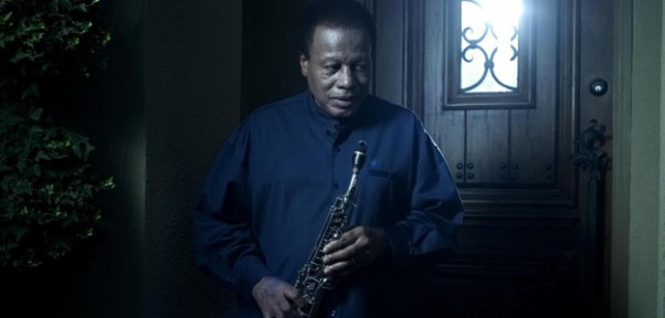 Wayne Shorter Without a Net Jazz