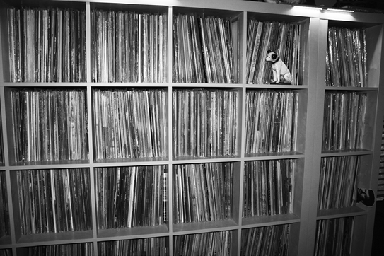 The Record Collector News World Headquarters vinyl collection —  a work in progress